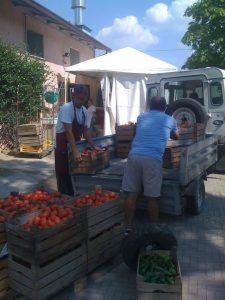 Consegna dei pomodori per la Passata