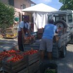 Prepariamo-la-Passata-di-Pomodoro