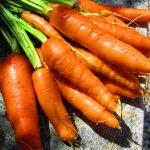 Le carote del Cucco
